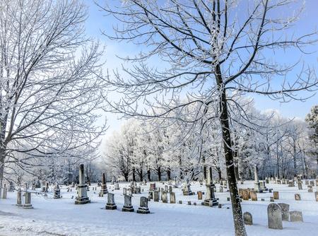 겨울 묘지