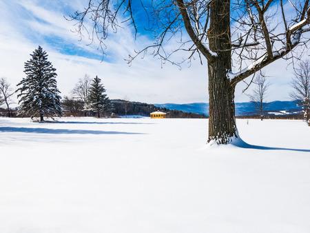 White snowy Winter