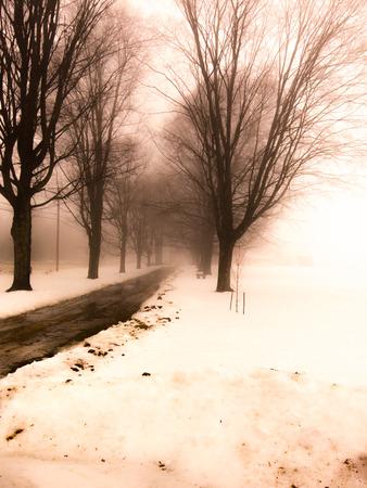 Fog sidewalk and snow in winter Reklamní fotografie