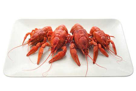 Crayfish on a beige rectangular plate on white background. photo