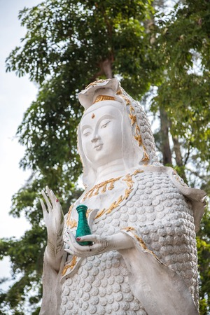 sutras: Mahayana Buddha The origin of the Mahayana sutras in India. And the blends with myth about Princess miaow fibrils. The cause of Chinese folk religion as a Bodhisattva Guan Yin in the women up.