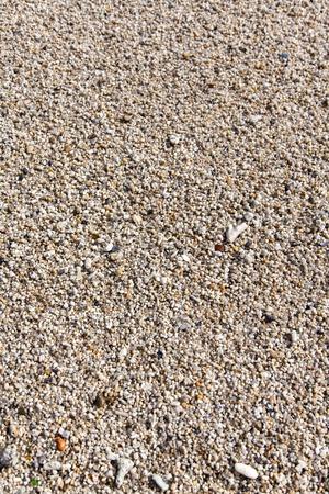 multicolored: Multi-colored sea gravel pebble texture