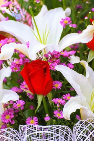 special day: Beautiful bouquet of flowers for a special day to congratulate.