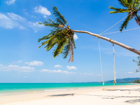 White sand beach and palm tree at a blue sky. photo