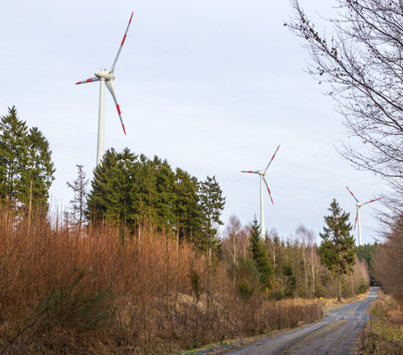 mains: Wind turbine in a wind farm in the forest.