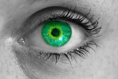 iris: Eye with green iris looks at viewer concept macro.