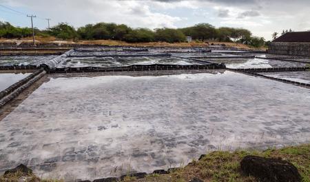 noire: Salines of Tamarin Mauritius.