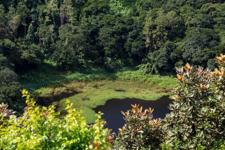 aux: Volcano crater of Trou aux Cerfs in Mauritius.