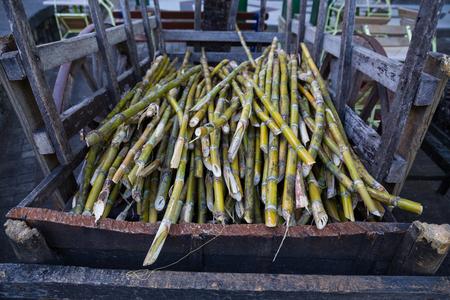 cane sugar: cane sugar on a dare for further processing.