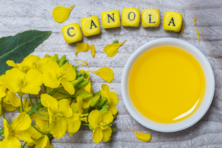Canola with oil concept on gray wood.