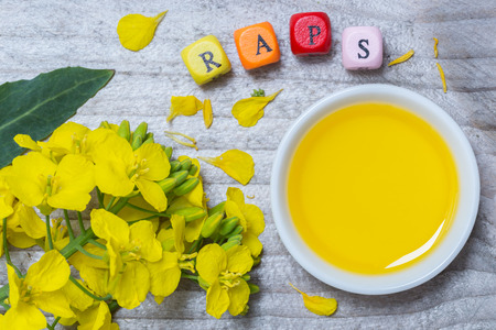 cooking oil: Raps (in german canola) with blossom and oil concept on gray wood. Stock Photo