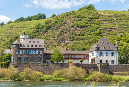 winegrowing: View of Kobern-Gondorf on the Moselle panorama.