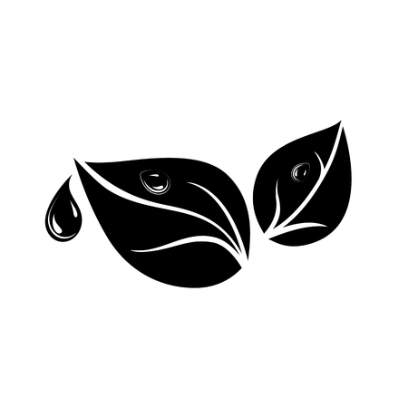 Pair of leaves and water or dew drop icon. May present concepts of fresh and natural. Vector Illustration