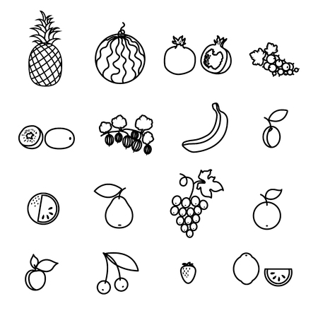 Set of fruit and berry line icons Vector Illustration
