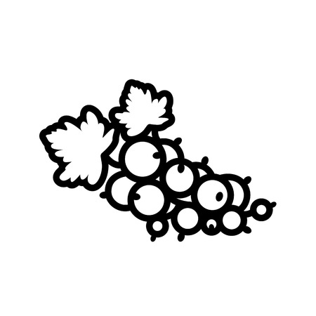 Fruit and berry collection - currant. Line icon of currant bunch with leaves. Vector Illustration