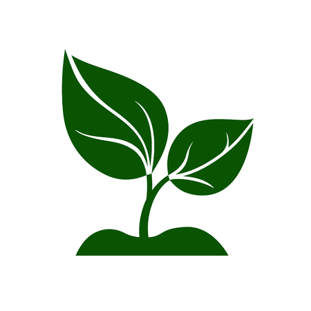 Icon of green plant. Sprout with green leaves growing on ground. Vector Illustration