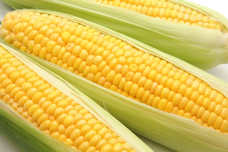 kernels: Corn in the ear Stock Photo