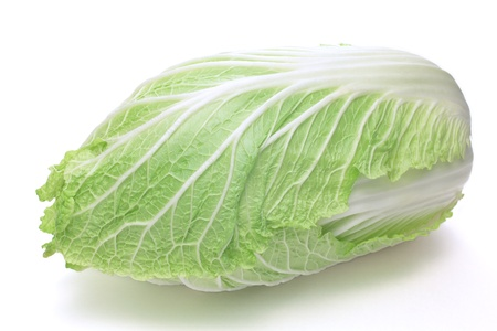 green cabbage: Napa cabbage Stock Photo