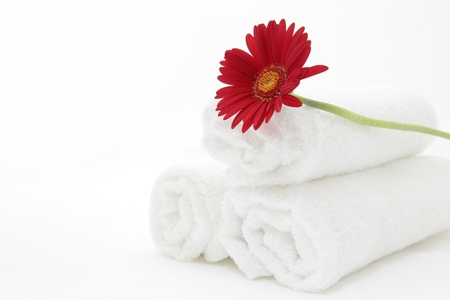 cotton flower: Red gerbera and towels