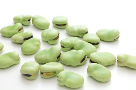 fava: Broad beans on white background