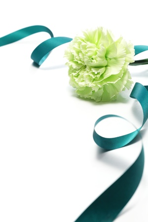 madre soltera: Clavel verde y cinta aisladas sobre fondo blanco