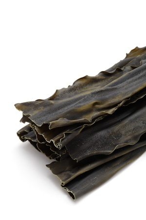Kombu, sea vegetable on white background