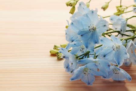 Light blue delphinium on wooden background