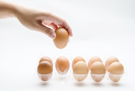 Person choosing the best egg from a carton of egg photo