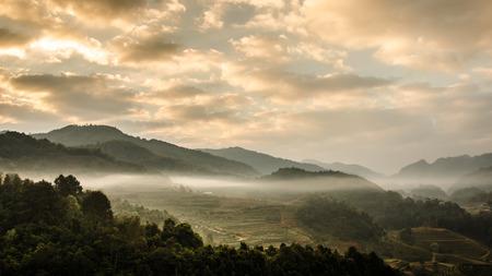 Tea plantation in morning view at doi Ang khang , Chiang mai ,Thailand