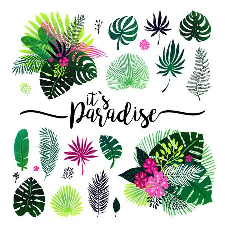 conscription: Set of an exotic bouquet, tropical plants, palm leaves and flowers, design elements. Illustration