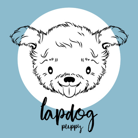 Lapdog puppy head illustration.