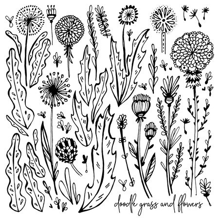 Set of black and white Doodle elements. Dandelions, grass, bushes, leaves, flowers. Vector illustration, Great design element for congratulation cards, banners and others