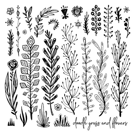 Set of black and white Doodle elements. Plant, grass, bushes, leaves, flowers. Vector illustration, Great design element for congratulation cards, banners 向量圖像