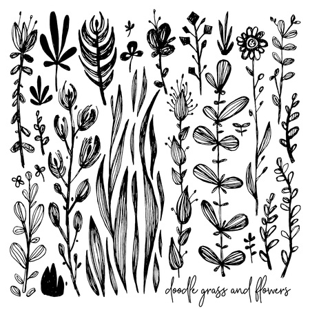 Set of black and white doodle elements, meadow, rose, grass, bushes, leaves, flowers. Vector illustration, Great design element for congratulation cards, banners