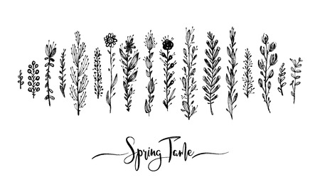 Spring time wording with hand drawn flowers. Set of black doodle elements, grass, leaves, flowers vector illustration. Great design element for congratulation cards, print, banners and others.