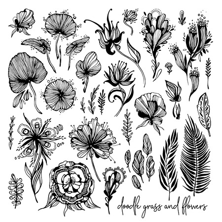 Set of black and white exotic flowers, doodle elements. Vector illustration, Great design element for congratulation cards, banners and others