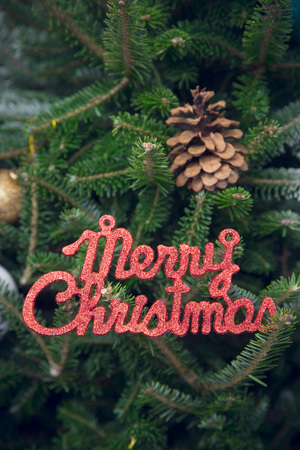 Merry christmas red gleaming inscription on a Christmas tree with a natural pine cone. Dark green Christmas or New Year background. Close up.