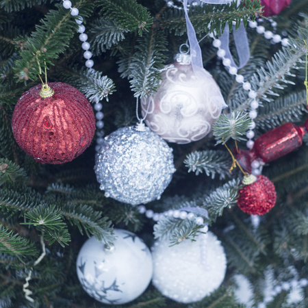 A festive mood with beautifully decorated Christas tree. White, silver and red baubles, white beads and ribbons on fir tree branches covered with frost. Close up. Cristmas or New Year background. Stock Photo