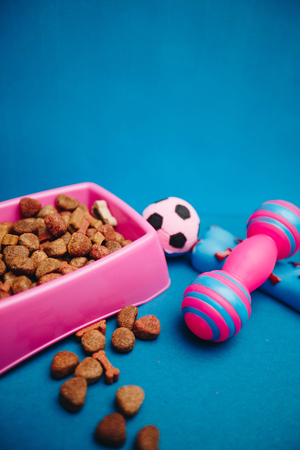 Healthy meal for a pet. A pink plastic bowl of dry dog food and cute rubber chewing toys on a bright one-color blue background. Pet care and veterinary concept. Spase for your text or image. Stock Photo