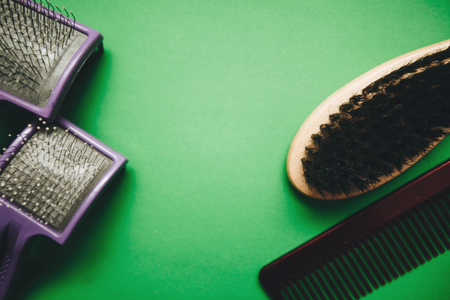 Green one-color background with grooming tools-plastic and wooden fur brushes and combs of different size, close up, top view. Pet care and veterinary concept. Spase for your text or image.