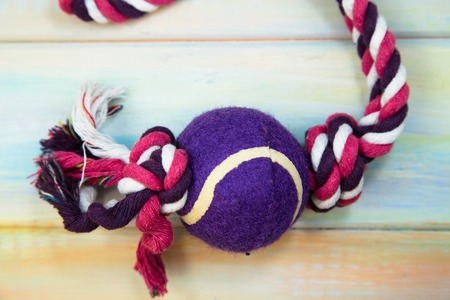 A colorful twisted rope dog toy with a purple ball on a colored wooden background, close up.