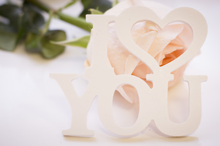 St. Valentines Day concept with a beautiful white rose and I Love You inscription, close up, white background