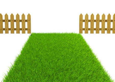 grass land: Green field and wooden fence  Render  Stock Photo