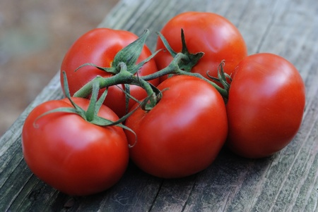 Five plump and juicy vine-ripened tomatoes  Stock Photo