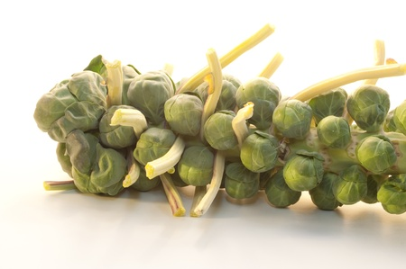 cruciferous: Brussel Sprouts on the stem