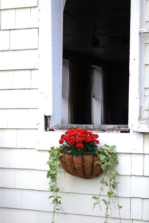 homey: Cottage window box and white wooden shingles Stock Photo