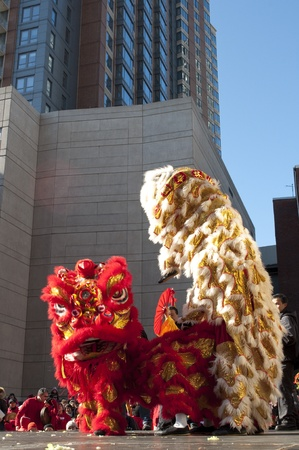Lion dancers on Chinese New Year