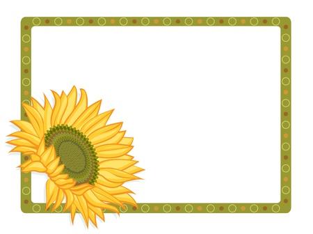 境界線と明るい黄色のヒマワリ