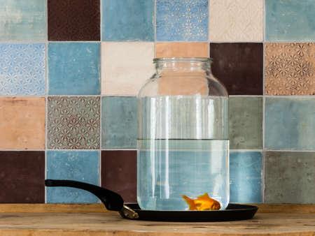 fluency: Goldfish for breakfast Stock Photo