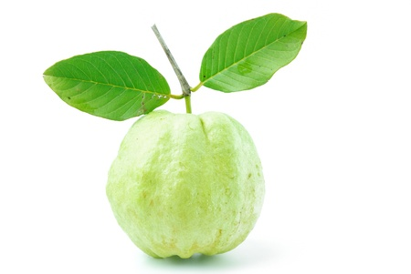Guava fruit has green skin and white flesh, vitamin C  photo